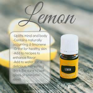 yl lemon