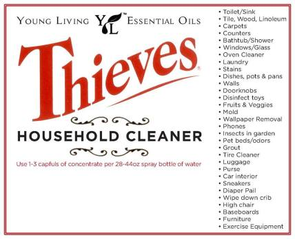 yl thieves cleaner
